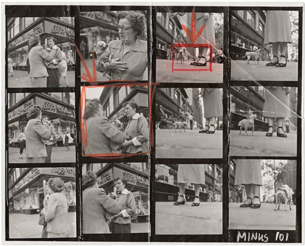 Contact-Sheet-Print-Elliott-Erwitt_1024x1024